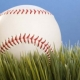 9to5to9: Take them out to the ballgame -- you bet